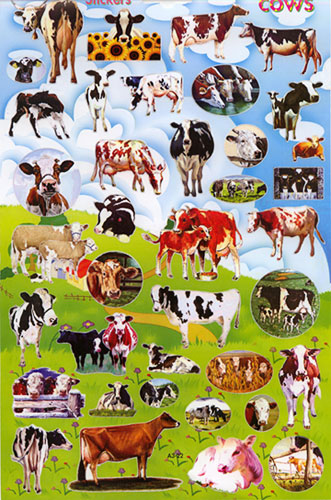 big sheet cow stickers